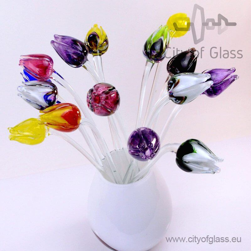 Glass Tulip - Home