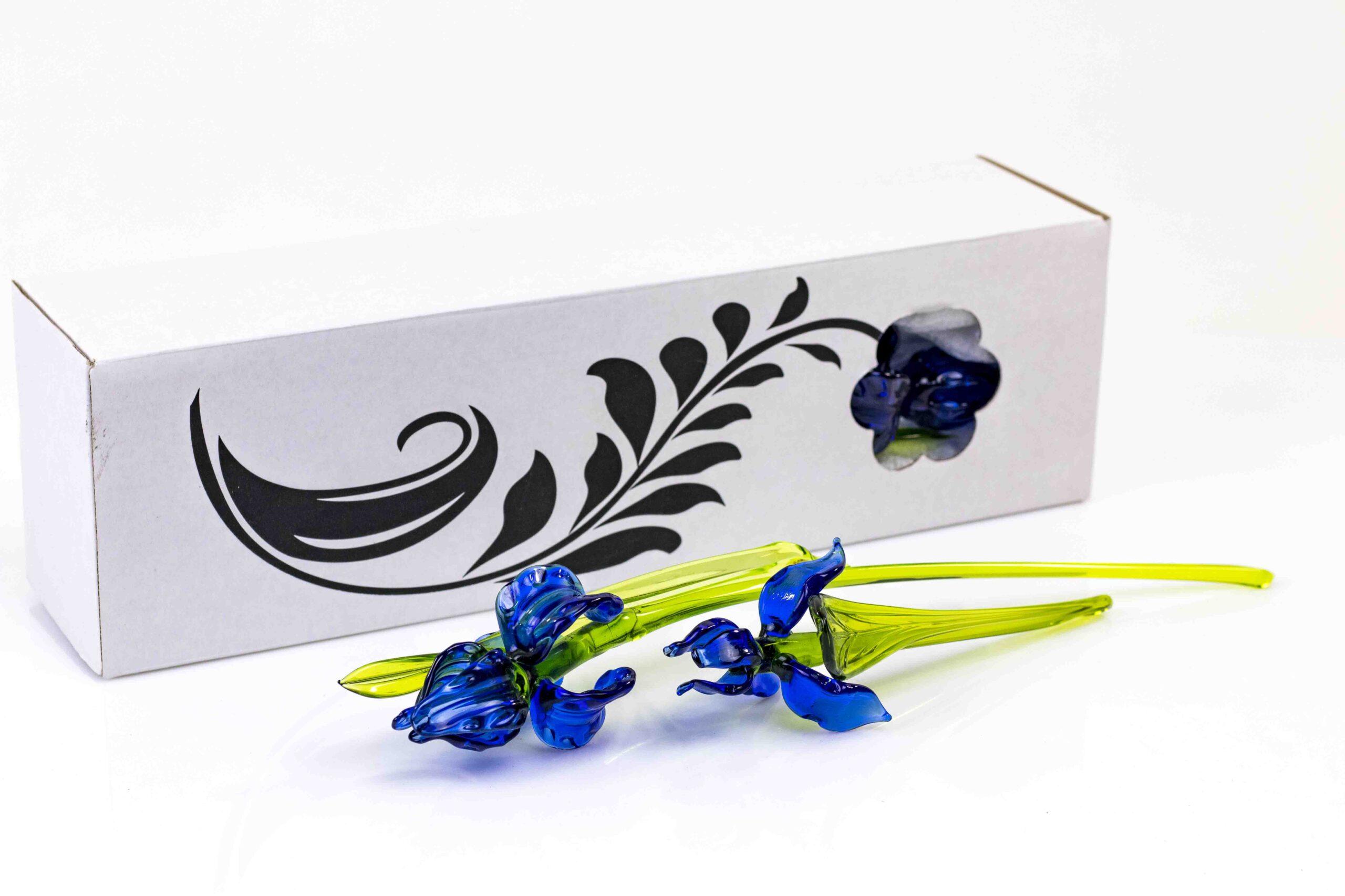 blauwe irissen set