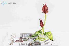 Tulpen staand rood,
